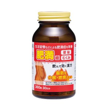 防風通聖散料エキス錠「寧薬」